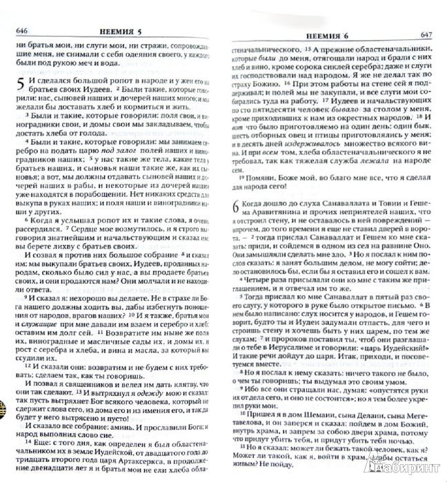Иллюстрация 1 из 10 для Библия. Книга священного писания Ветхого и Нового завета. Каноническое | Лабиринт - книги. Источник: Лабиринт