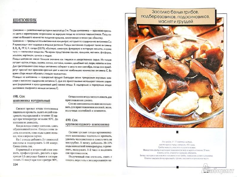 Иллюстрация 1 из 6 для Консервирование. Большая книга рецептов | Лабиринт - книги. Источник: Лабиринт