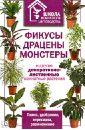 Фикусы, драцены, монстеры и другие декоративно-лиственные комнатные растения
