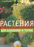 Растения для балконов и террас. Шаг за шагом к зеленому раю