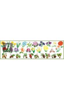 Купить Набор развивающих наклеек Моя корзинка. Цветы и орехи (Н-1410), Хэппи-Ко, Знакомство с миром вокруг нас