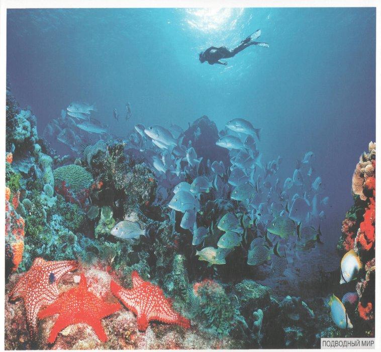 Иллюстрация 1 из 20 для Мир в картинках: Морские обитатели. 3-7 лет | Лабиринт - книги. Источник: Лабиринт