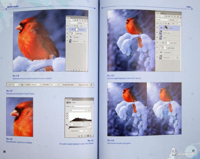 Иллюстрация 1 из 12 для Photoshop CS6. Учимся на практике - Анастасия Аверина   Лабиринт - книги. Источник: Лабиринт