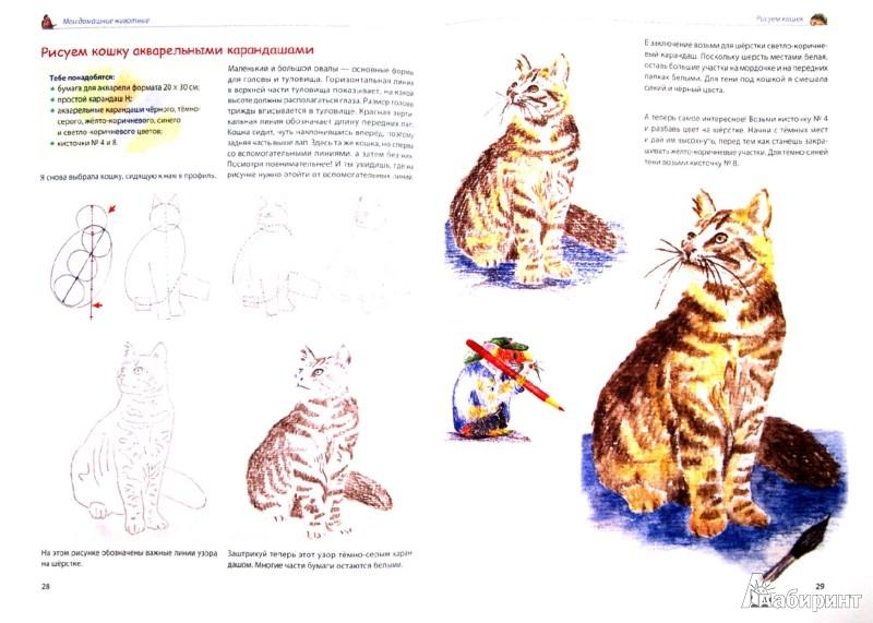 Иллюстрация 1 из 19 для Мои первые уроки рисования. Я умею рисовать животных! - Уте Людвиг-Кайзер | Лабиринт - книги. Источник: Лабиринт