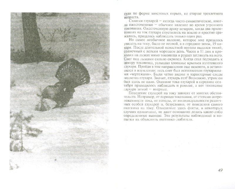 Иллюстрация 1 из 5 для Охота на глухариных токах   Лабиринт - книги. Источник: Лабиринт