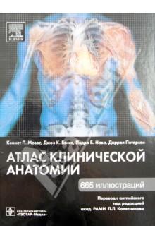 Атлас клинической анатомии винсент перез большой атлас анатомии человека