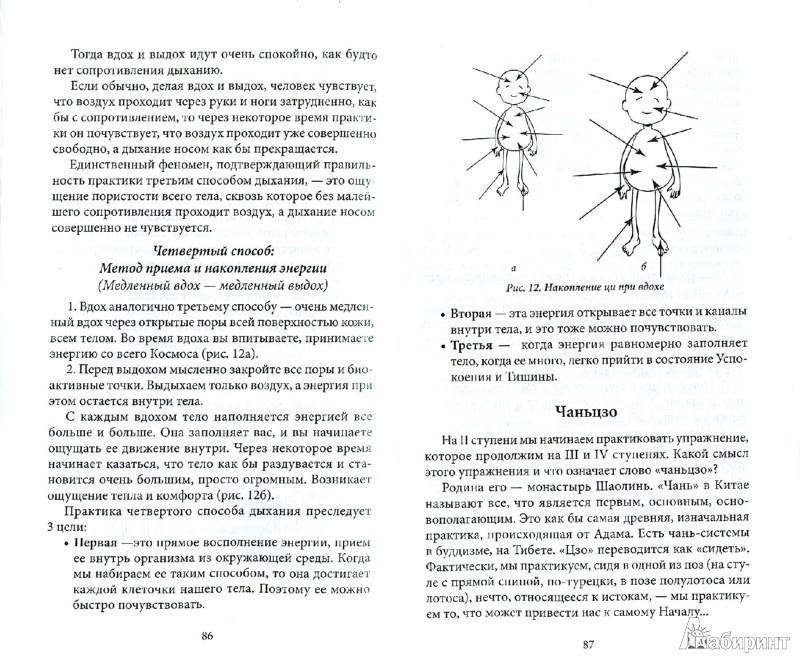 Иллюстрация 1 из 11 для Чжун Юань цигун. Вторая ступень - Сюй, Мартынова | Лабиринт - книги. Источник: Лабиринт