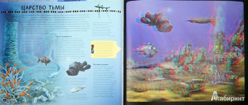 Иллюстрация 1 из 13 для Животные нашей планеты. От океанских глубин до - Баголи, Шел | Лабиринт - книги. Источник: Лабиринт