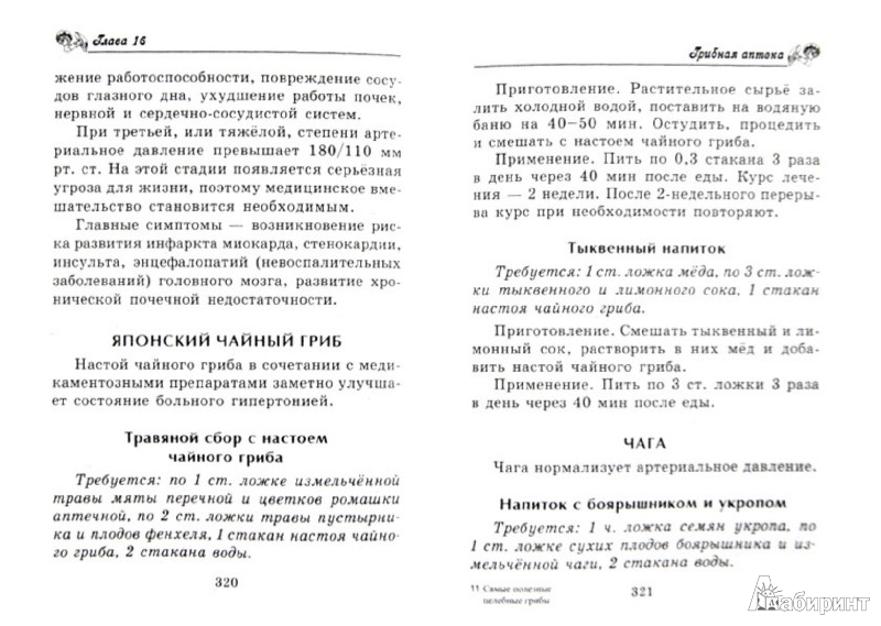 Иллюстрация 1 из 6 для Целительные грибы от всех болезней - Шкитина, Серикова, Гаврилова | Лабиринт - книги. Источник: Лабиринт
