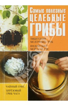 Самые полезные целебные грибы. Чайный гриб, тибетский молочный гриб, березовый гриб чага