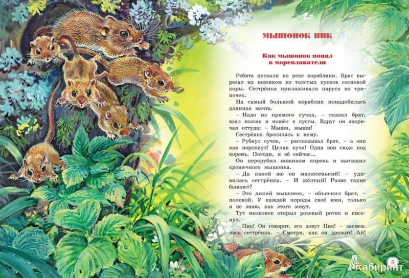 Иллюстрация 1 из 36 для Большая книга рассказов - Виталий Бианки   Лабиринт - книги. Источник: Лабиринт