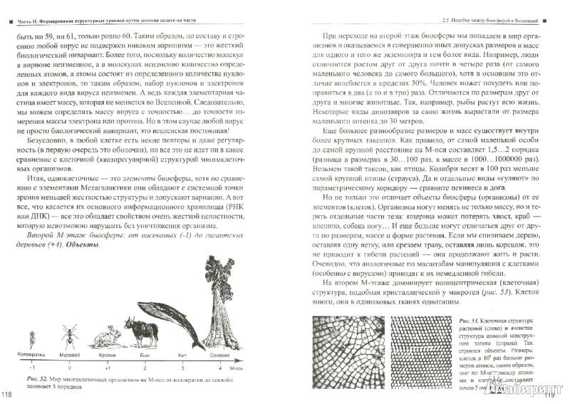 Иллюстрация 1 из 8 для Теория эволюции иерархических систем. Книга первая. Структурные уровни природы - Сергей Сухонос   Лабиринт - книги. Источник: Лабиринт