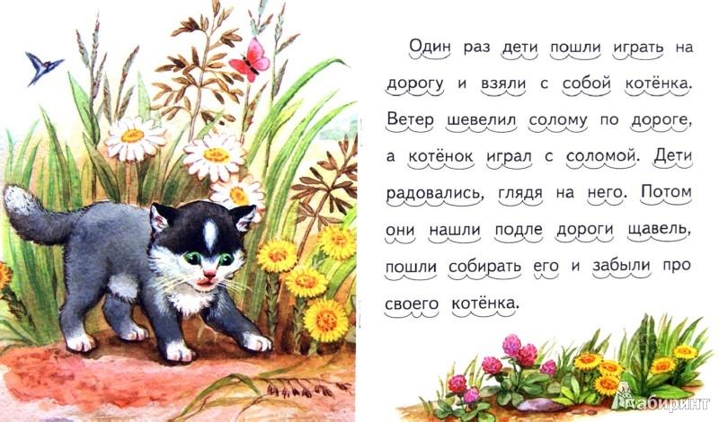 Иллюстрация 1 из 15 для Котёнок - Лев Толстой | Лабиринт - книги. Источник: Лабиринт