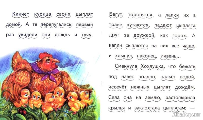 Иллюстрация 1 из 20 для То, чего котик не ожидал - Александр Федоров-Давыдов | Лабиринт - книги. Источник: Лабиринт