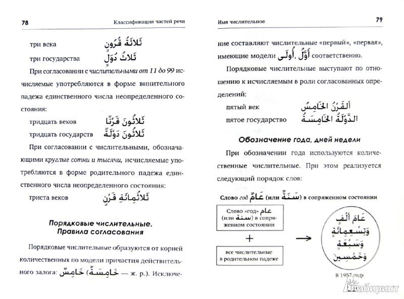 Иллюстрация 1 из 6 для Грамматика арабского языка. Вводный курс - Редькин, Берникова | Лабиринт - книги. Источник: Лабиринт