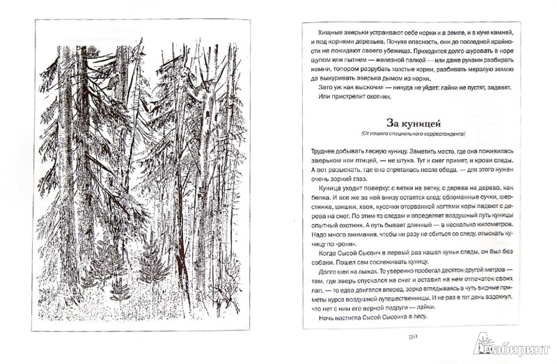 Иллюстрация 1 из 8 для Лесная газета на каждый год. Осень-зима - Виталий Бианки | Лабиринт - книги. Источник: Лабиринт