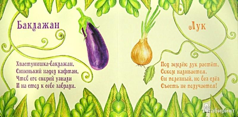 Иллюстрация 1 из 6 для Овощи | Лабиринт - книги. Источник: Лабиринт