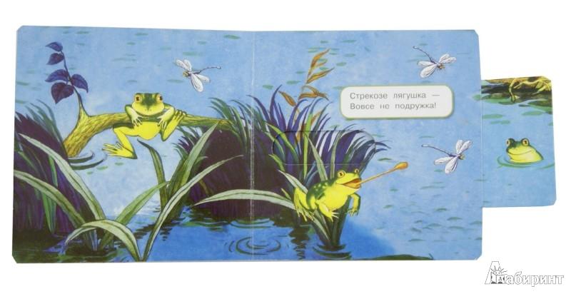 Иллюстрация 1 из 49 для Что у мишки на обед? - Юлия Шигарова | Лабиринт - книги. Источник: Лабиринт