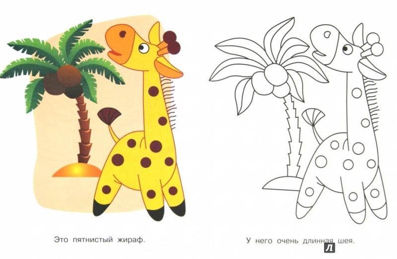 Иллюстрация 1 из 22 для Животные жарких стран. Проказница мартышка | Лабиринт - книги. Источник: Лабиринт