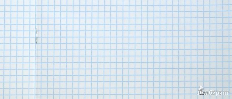 Иллюстрация 1 из 5 для Тетрадь в клетку Blue Nose Friend, 96 листов. А5 (36359-BN/13) | Лабиринт - канцтовы. Источник: Лабиринт