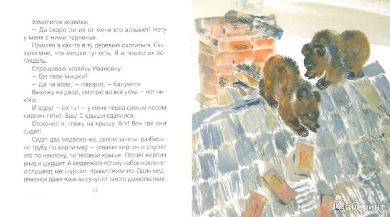 Иллюстрация 1 из 35 для Две мышки - Евгений Чарушин | Лабиринт - книги. Источник: Лабиринт