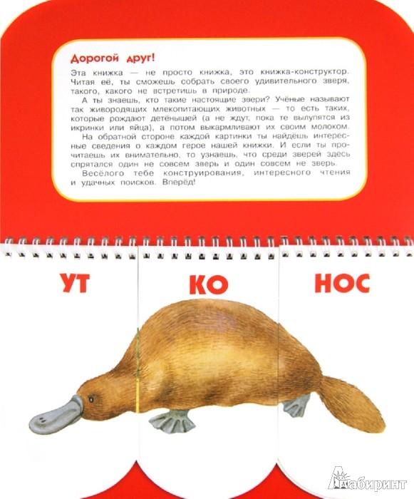 Иллюстрация 1 из 20 для Пере-звери. Собери неведому зверушку. 512 смешных зверей под одной обложкой - Н. Федорова   Лабиринт - книги. Источник: Лабиринт