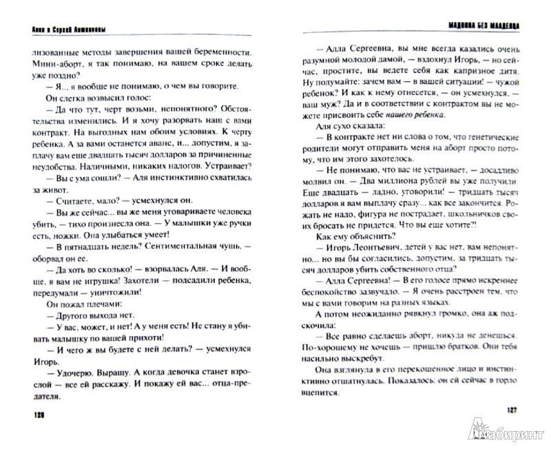 Иллюстрация 1 из 23 для Мадонна без младенца - Литвинова, Литвинов | Лабиринт - книги. Источник: Лабиринт