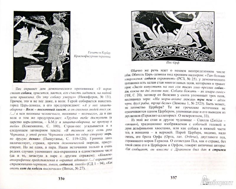 Иллюстрация 1 из 13 для Потустронний Мир Славян - Богумил Волхв | Лабиринт - книги. Источник: Лабиринт