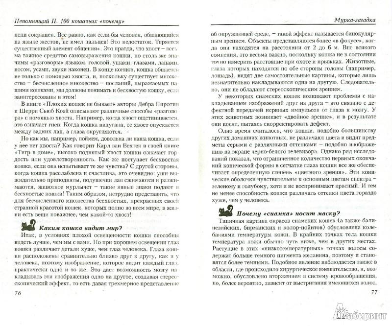 Иллюстрация 1 из 8 для 100 кошачьих «Почему». Вопросы и ответы - Николай Непомнящий | Лабиринт - книги. Источник: Лабиринт