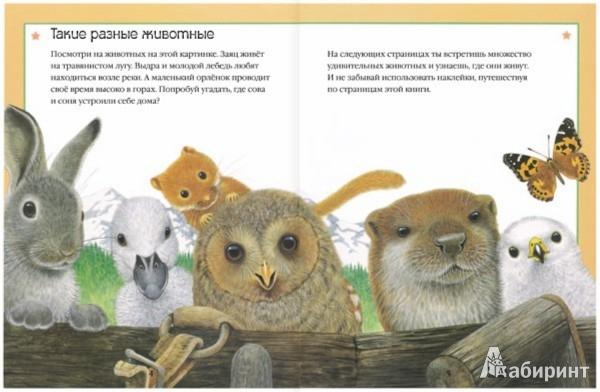 Иллюстрация 1 из 35 для Чудо-наклейки. Мир природы | Лабиринт - книги. Источник: Лабиринт