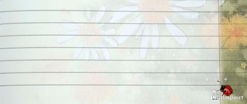 Иллюстрация 1 из 12 для Тетрадь для уроков, домашних заданий, перемен и каникул. 48 листов. Линейка | Лабиринт - канцтовы. Источник: Лабиринт