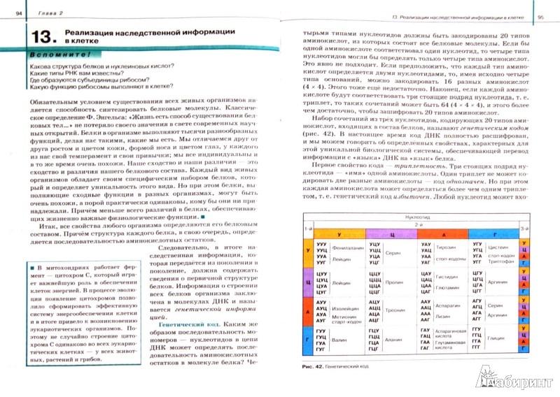 Иллюстрация 1 из 15 для Биология. Общая биология. 10 класс. Учебник. Базовый уровень. Вертикаль. ФГОС - Сивоглазов, Агафонова, Захарова | Лабиринт - книги. Источник: Лабиринт