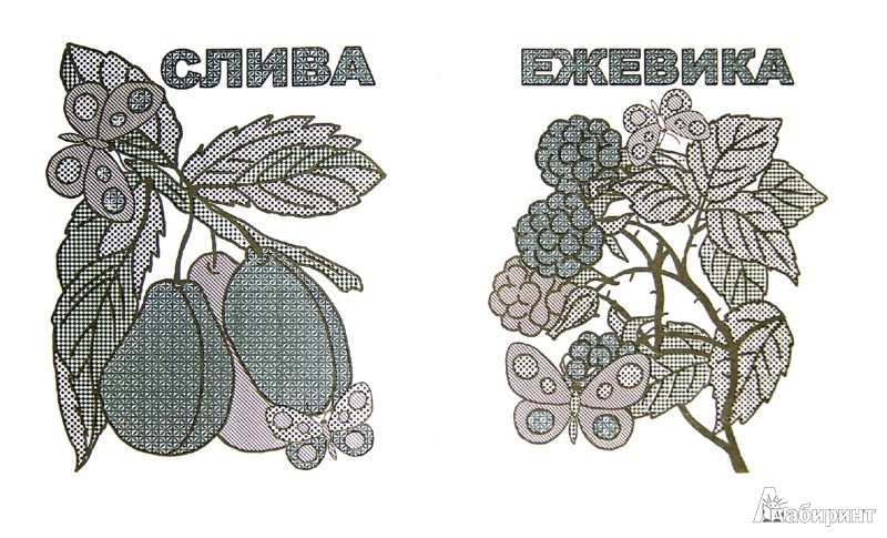 Иллюстрация 1 из 6 для Фруктовый сад. Раскрась водой | Лабиринт - книги. Источник: Лабиринт