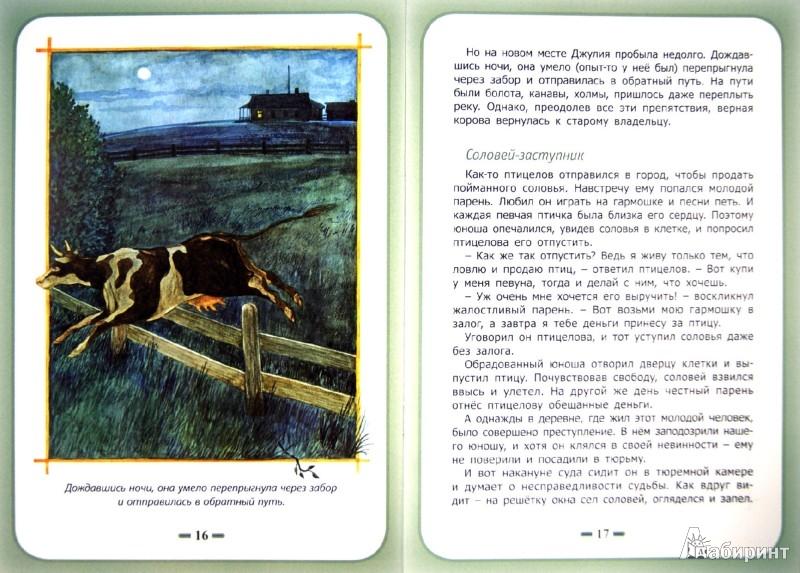 Иллюстрация 1 из 29 для Преданность людям - Белевцева, Жданова | Лабиринт - книги. Источник: Лабиринт