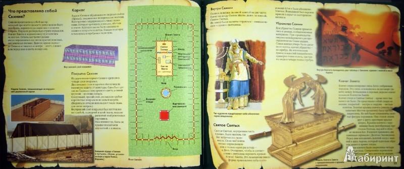 Иллюстрация 1 из 5 для Скиния - Даули, Пол   Лабиринт - книги. Источник: Лабиринт