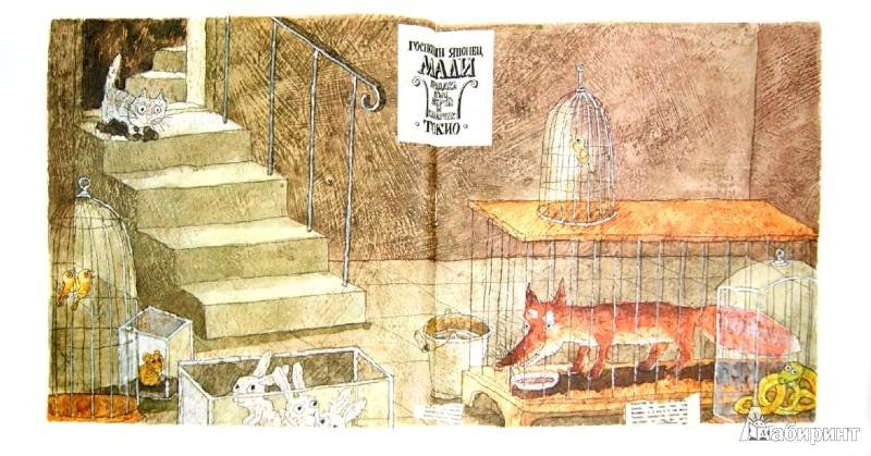 Иллюстрация 1 из 37 для Шамайка - королева кошек - Юрий Коваль   Лабиринт - книги. Источник: Лабиринт
