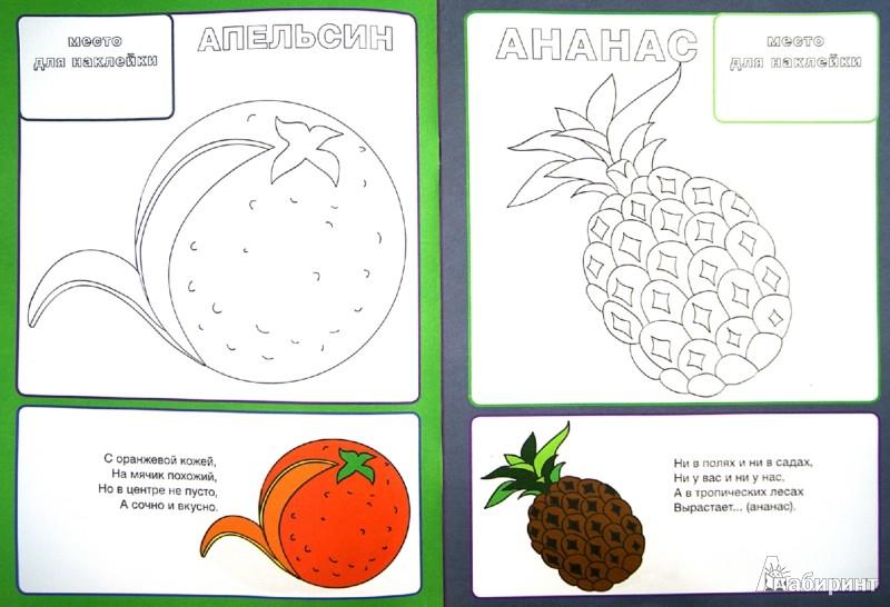 Иллюстрация 1 из 21 для Фрукты и ягоды   Лабиринт - книги. Источник: Лабиринт