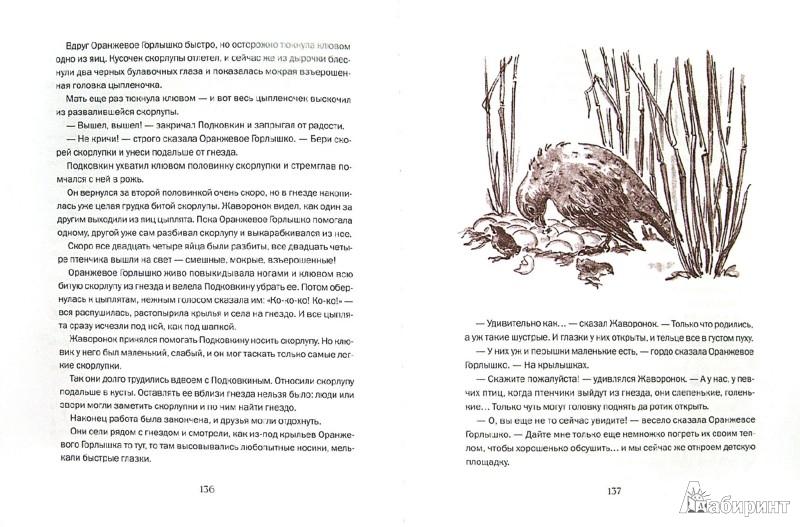 Иллюстрация 1 из 34 для На земле Новгородской - Виталий Бианки   Лабиринт - книги. Источник: Лабиринт