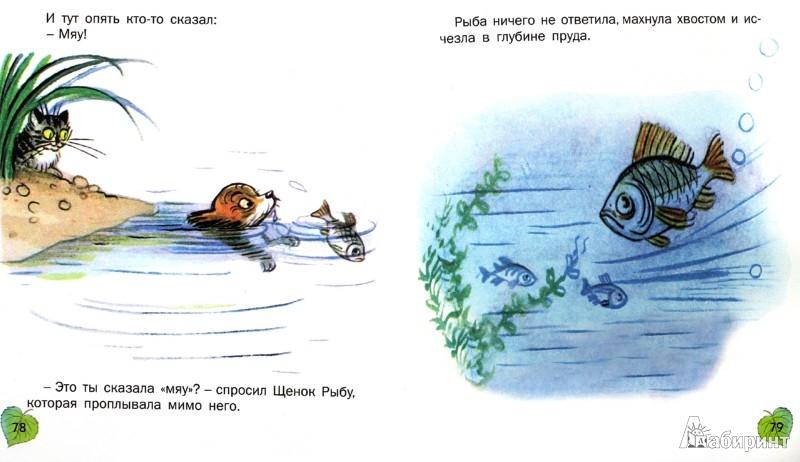 Иллюстрация 1 из 23 для Сказки и картинки - Владимир Сутеев | Лабиринт - книги. Источник: Лабиринт