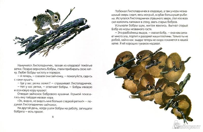 Иллюстрация 1 из 21 для Листопадничек - Иван Соколов-Микитов | Лабиринт - книги. Источник: Лабиринт