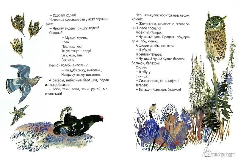 Иллюстрация 1 из 15 для Птичьи разговоры - Виталий Бианки | Лабиринт - книги. Источник: Лабиринт