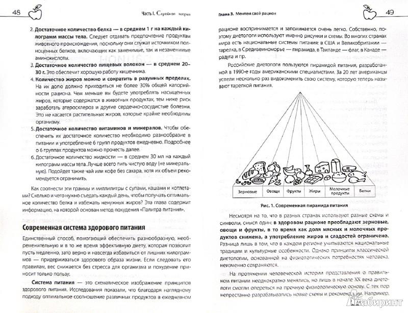 Иллюстрация 1 из 3 для Палитра питания. Легкий путь к стройности - Екатерина Белова | Лабиринт - книги. Источник: Лабиринт