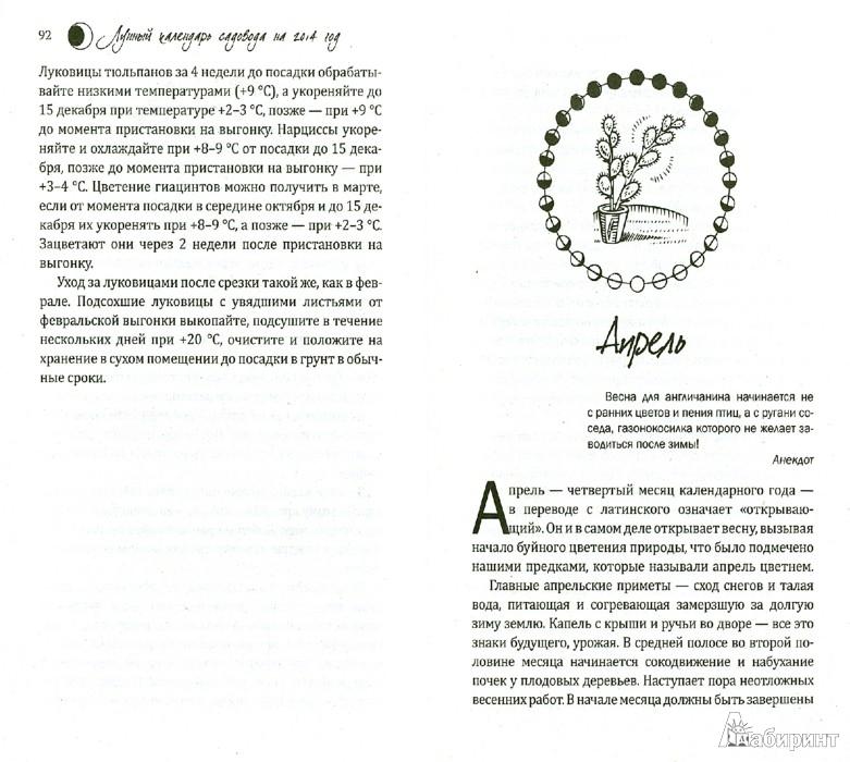 Иллюстрация 1 из 8 для Лунный календарь садовода на 2014 год - Александр Лидин   Лабиринт - книги. Источник: Лабиринт