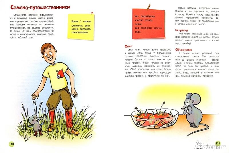 Иллюстрация 1 из 25 для Большая книга научных опытов для школьников - Болушевский, Яковлева, Зарапин | Лабиринт - книги. Источник: Лабиринт