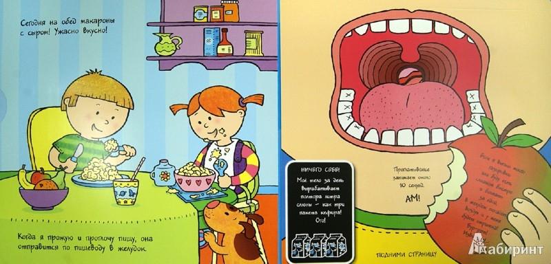 Иллюстрация 1 из 8 для Моё тело.Первая книга о том, как работает тело человека | Лабиринт - книги. Источник: Лабиринт