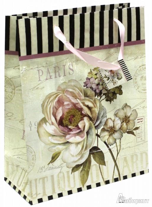 Иллюстрация 1 из 2 для Пакет подарочный (TZ 6605)   Лабиринт - сувениры. Источник: Лабиринт