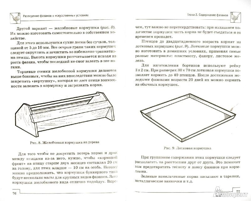 Иллюстрация 1 из 8 для Разведение фазанов в искусственных условиях - Л. Моисеенко | Лабиринт - книги. Источник: Лабиринт