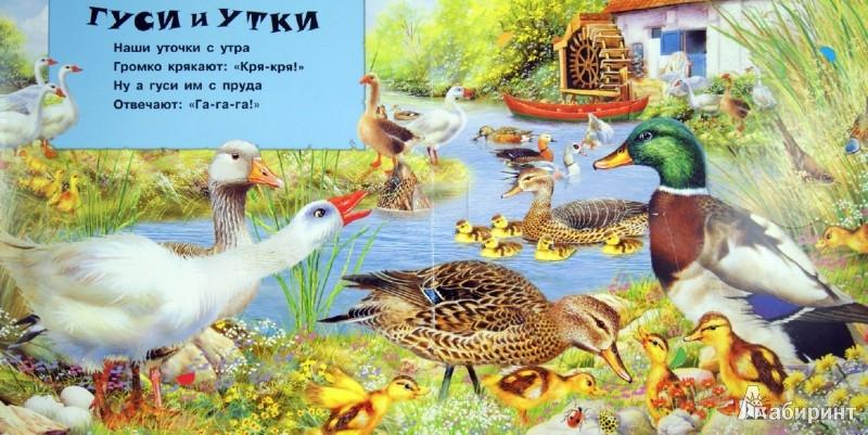 Иллюстрация 1 из 8 для Животные в деревне. Открывай и слушай | Лабиринт - книги. Источник: Лабиринт