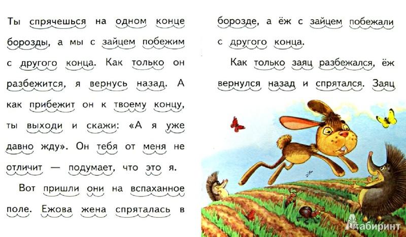 Иллюстрация 1 из 27 для Ёж и заяц - Лев Толстой | Лабиринт - книги. Источник: Лабиринт