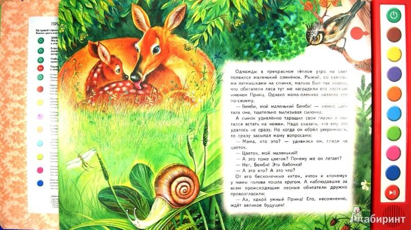 Иллюстрация 1 из 13 для Бемби - Феликс Зальтен | Лабиринт - книги. Источник: Лабиринт